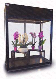 Altana chłodnicza kwiatowa Rapa SCh-AK 1800 + MALOWANIE