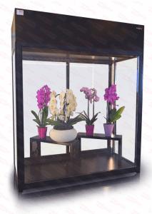 Altana chłodnicza kwiatowa Rapa SCh-AK 1600 + MALOWANIE