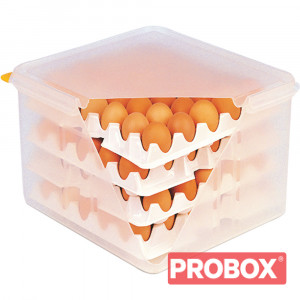 Pojemnik na jajka z 8 tacami