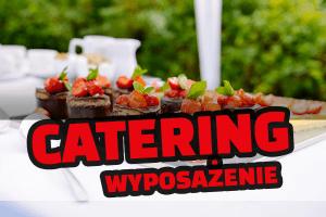 Wyposażenie kuchni do cateringu – sprzęt niezbędny do cateringu