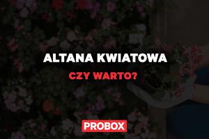 Altana kwiatowa – czy warto?